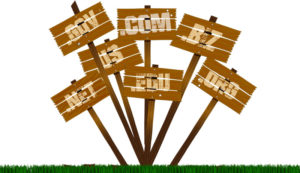 Masa Aktif Domain