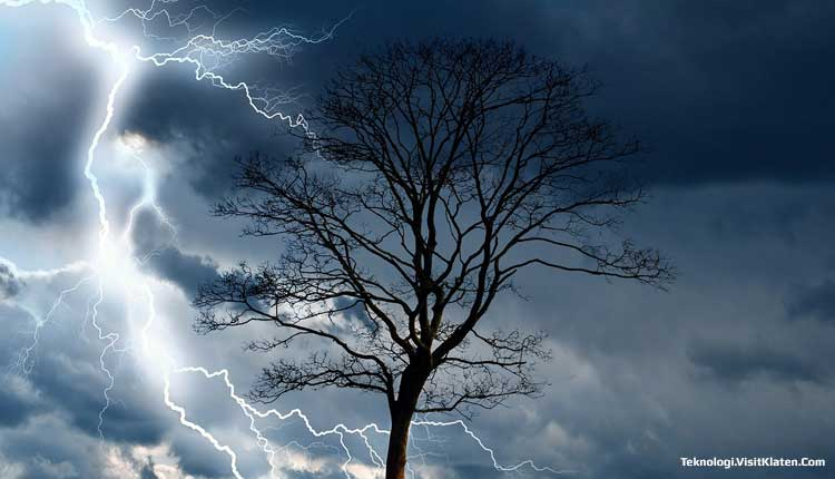 Benarkah Main HP Saat Hujan Bisa Tersambar Petir?